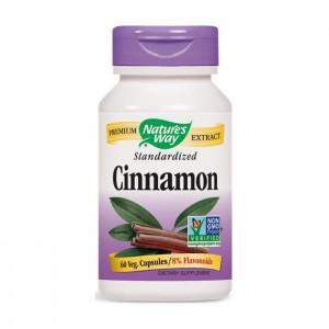 Nature's Way Cinnamon / Канела 500 мг. 60 вегетариански капсули