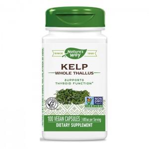 Nature's Way Kelp / Келп/Кафяви водорасли 600 мг. 100 вегетариански капсули