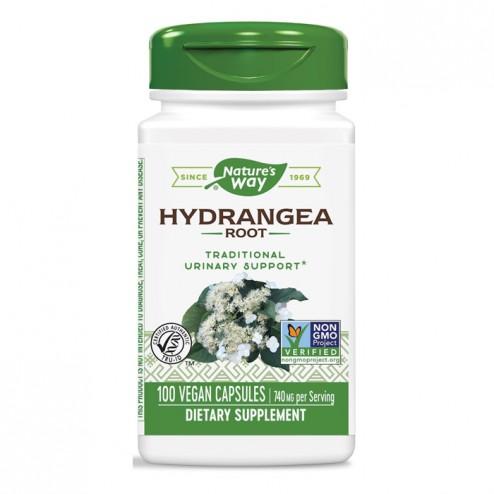 Nature's Way Hydrangea Root / Хортензия (корен) 370 мг. 100 вегетариански капсули