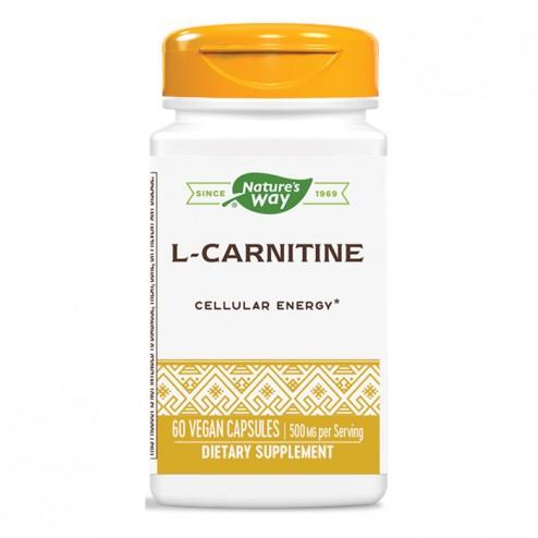 Nature's Way L-Carnitine / Л-Карнитин 500 мг. 60 вегетариански капсули