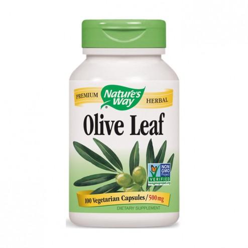 Nature's Way Olive Leaf / Лист от маслина 500 мг. 100 вегетариански капсули