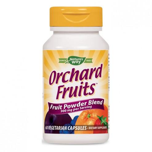 Nature's Way Orchard Fruits / Плодов антиоксидант 450 мг. 60 вегетариански капсули