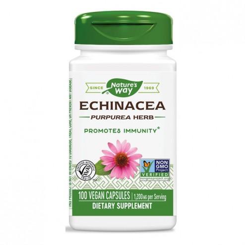 Nature's Way Echinacea / Ехинацея 400 мг. 100 вегетариански капсули