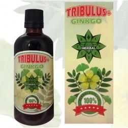 Cvetita Herbal TRIBULUS+GINKO 100 мл. течен екстракт