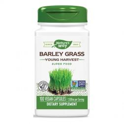 Nature's Way Barley Grass / Ечемичена трева 500 мг. 100 вегетариански капсули